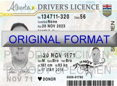 alberta DRIVER LICENSE ORIGINAL FORMAT, DESIGN SPECIFICATIONS, NOVELTY SECURITY CARD PROFILES, IDENTITY, NEW SOFTWARE ID SOFTWARE