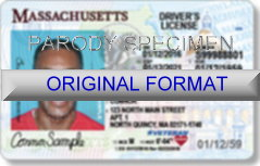 Massachusetts Fake ID Template Large