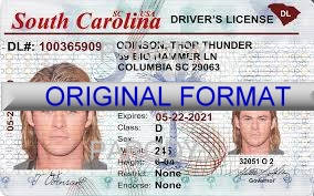 South Carolina Fake ID Template Large